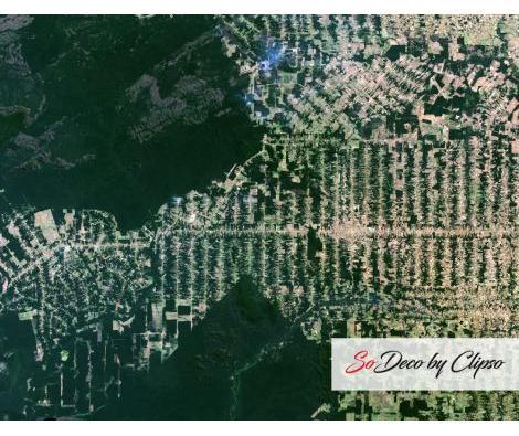 Clipso - PO Déforestation dans l'Etat de Rondonia Brésil 11 08 2001